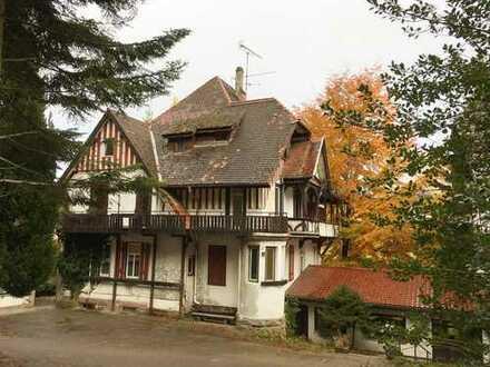 Chance! Herrschaftliche Villa und Hotel in Waldrandlage