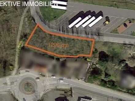 Für Bauträger - Baugrundstück in Ober-Ramstadt