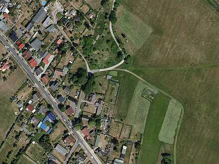 AUKTION: Zwei Landwirtschaftsflächen am Stettiner Haff - vertragslos genutzt