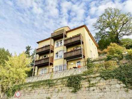+++ Rarität! - 2-Zimmer-Wohnung mit Gartenanteil und Balkon mit Elbblick in Dresden Wachwitz +++