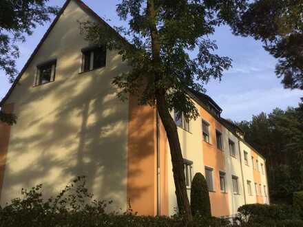 Geräumige, renovierte 1-Zimmer-DG-Wohnung in Beelitz