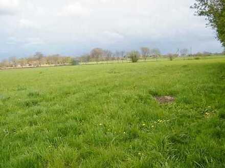 2,33 ha Weideland in der Gemeinde Holtriem, OT Eversmeer