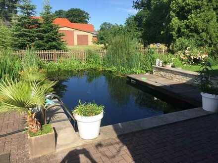 Außergewöhnliches Wohnhaus mit Schwimmteich im Herzen von Hillerse!