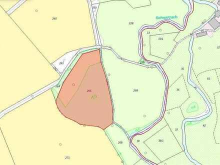 Wald- und Wiesengrundstück (Mischwald) - 1,8ha - Landkreis Cham