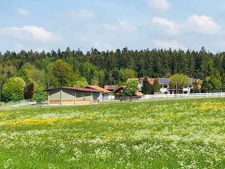 Einzigartiges Anwesen mit 2 WE, idyllische Lage, verkehrsgünstig - auch für Pferdeliebhaber