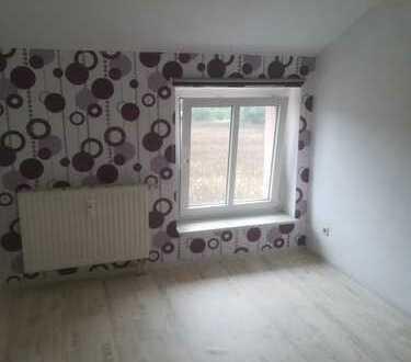 Preiswerte, vollständig renovierte 4-Zimmer-Wohnung zur Miete in Lugau