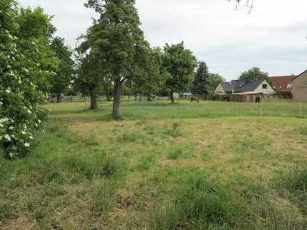 Großes Grundstück in Beckedorf - zentral und ländlich zugleich gelegen