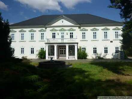 Historisches Schlösschen mit Geschichte und ca. 20.000 m² großem Park zu verkaufen