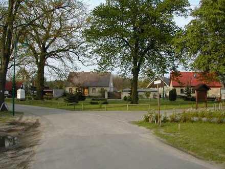 Ruhiges, preiswertes Grundstück in Waldnähe