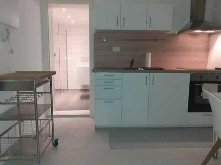 Erstbezug nach Sanierung: Möbliertes, ruhiges 1-Zimmer-Hobbyappartement, Einbauküche in Heidelberg