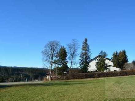 Gruppen-/Seminarhaus in schöner Schwarzwaldhöhenlage