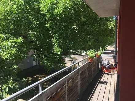 Helles Zimmer in moderner Wohnung im Französischen Viertel / ab 15.07.2019 frei / unbefristet