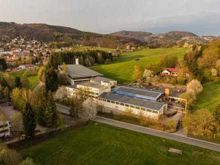 Halle, Werkstatt, Produktion, Atelier, Lagerraum, Büro 31 qm²