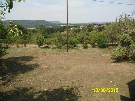 BECKINGEN - Düppenweiler-Grundstück mit Fernsicht