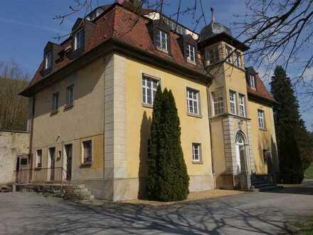 Schloss fast in Alleinlage - Nebengebäude und Halle für Gewerbe oder Oldtimer in herrlicher Natur!