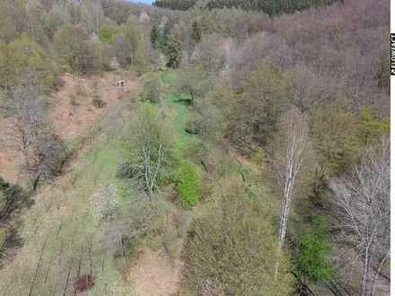 Grundstück/ Grünfläche/ Weideland in Siegen-Niederschelden