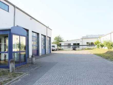 Attrakive Büro- und Außenfläche in Wellsee! (80+800m²)