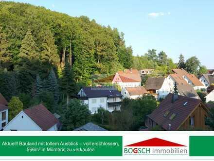 BOGSCH Immobilien – erhaben und sonnig, Bauland mit Fernblick in Mömbris zu verkaufen