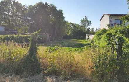 Schönes, ländliches Grundstück in Jugenheim (Rheinhessen)