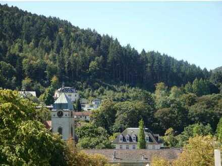 Zentral, Ruhig, Südlage , mit Blick und Balkon.