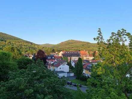 Geschmackvolle Wohnung mit einem Zimmer sowie Balkon und Einbauküche in Heidelberg