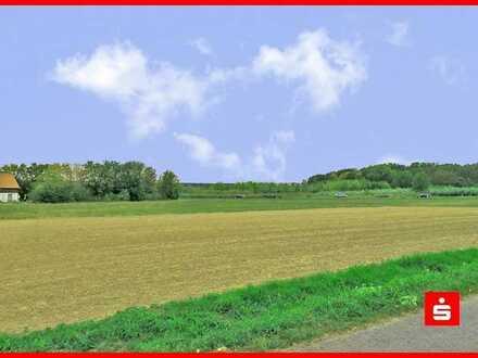 Für kühle Rechner - Kapitalanlage? Landw. Grundstück in Schwarzach a.M. OT Schwarzenau