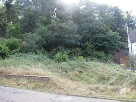 Bauplatz mit eigenem Wald in 66953 Pirmasens - Niedersimten