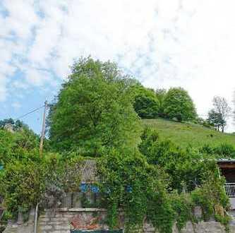 Freizeitgrundstück oder Bauplatz für ein kleines Haus, hier ist alles möglich!