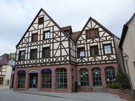 Großzügige, luxuriöse, ruhige und große Dachwohnung im Zentrum des mittelalterlichen Herzogen