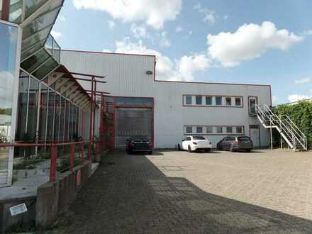 Produktionshalle in SZ-Bad