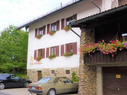 Schönes Mehrfamilien-Haus mit 12 - Zimmern in Regen (Kreis), Bayerisch Eisenstein