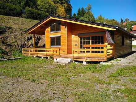Schönes Holzhaus mit Gewerbehalle, Kleinschmalkalden
