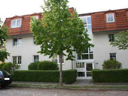 Wunderschöne und großzügige 4-Zimmer-Wohnung mit eigenem Garten und Garage