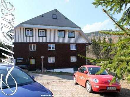 3 Zi.Schwarzwald-Wohnung in Feldberg-Falkau