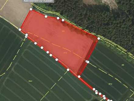 1,6 Hektar landwirtschaftlicher Grund nahe Mauern