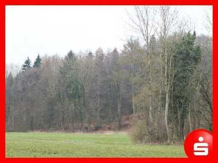 4 Waldgrundstücke im Schlingener Wald