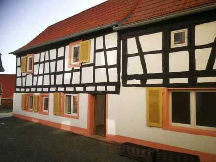 Schönes Fachwerk-Haus mit 4 Zimmern, K, Bad, sep. WC in Neuleiningen
