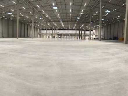 Ab sofort & provisionsfrei! Neubau-Erstbezug - ca. 13.000 m² - Colliers