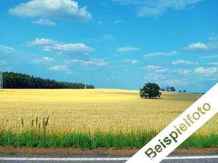 Landwirtschaftsfläche bei Dahlen