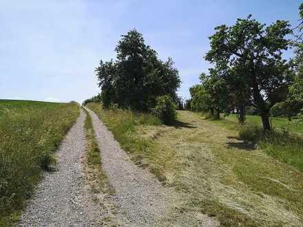 TOLLES GRDSTCK in versteckter Lage mit Obstbäume direkt vom Eigentümer