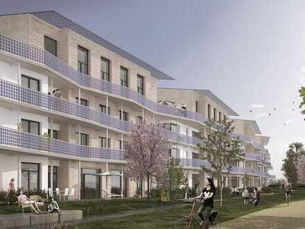 Über den Baumkronen von Schallstadt: Große Penthauswohnung mit Galerie und Dachterrasse