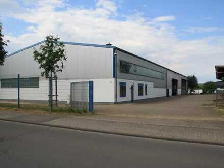 Provionsfreie Gewerbe-, Lager- oder Produktionshalle in Polch