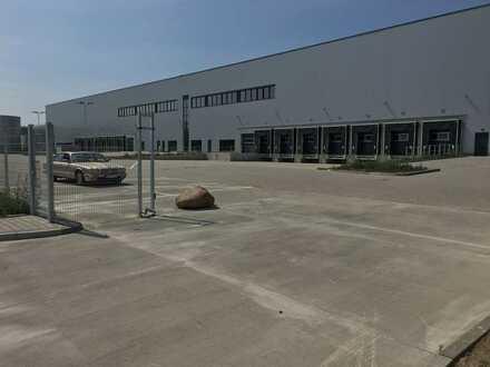 """""""BAUMÜLLER & CO."""" - ca. 15.000 m² Hallenfläche - NEUBAU! - ebenerdige Andienung + Überladebrücken"""
