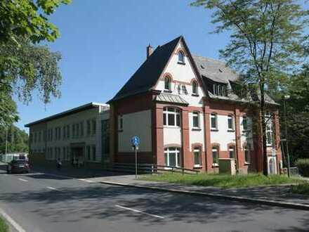 Modern trifft historisch - attraktives Büro- und Geschäftsgebäude in Auerbach/Vogtl.