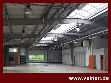 Gewerbehöfe Godesberg-Nord - große Produktions- oder Lagerhalle mit Tageslicht