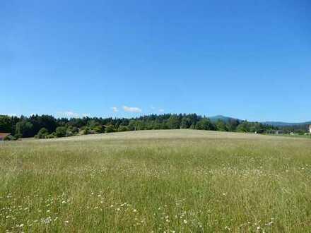 Mitten im Nationalpark Bayer. Wald , St. Oswald -Riedlhütte