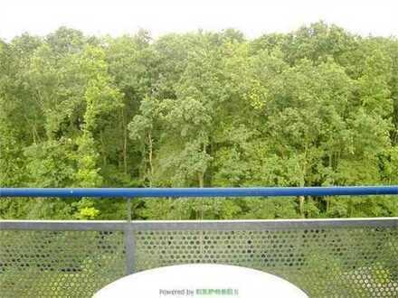 Helle, große 4-Z-Wohnung mit Balkon direkt am Niddapark mit hohem Erholungswert