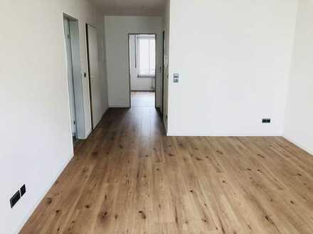Neu renovierte, sonnige 2-Zimmer Wohnung