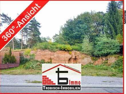 Bauplatz-Sandstein-Wiese | Fischbach (Pfalz) | Trobisch-Immobilien