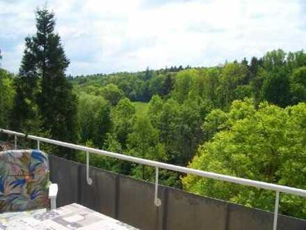 schöne 2 1/2 -DG-Galerie -ETW in ruhiger und grüner Ortsrandlage von Stuttgart-Möhringen